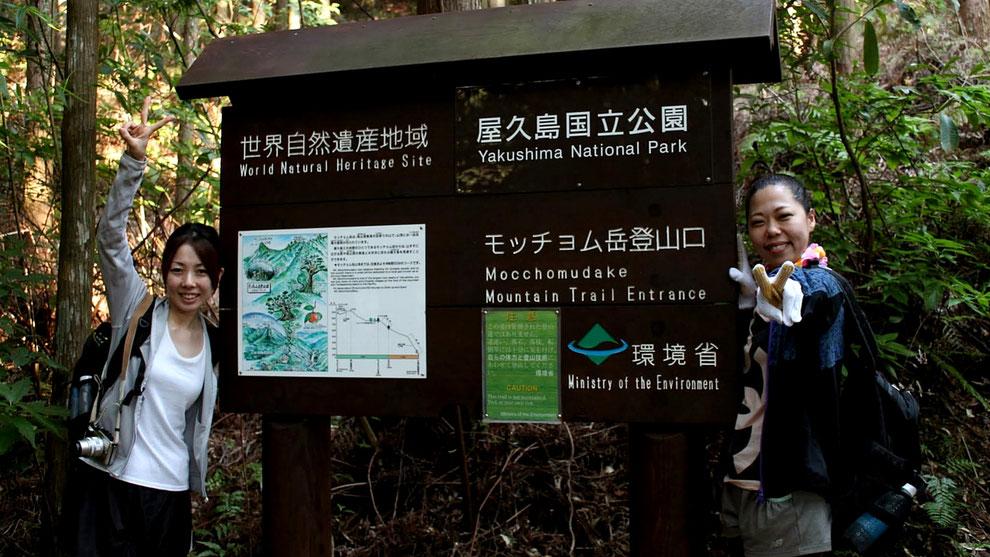 登山口から、世界自然遺産エリアがはじまります。(モッチョム岳ガイドツアー)