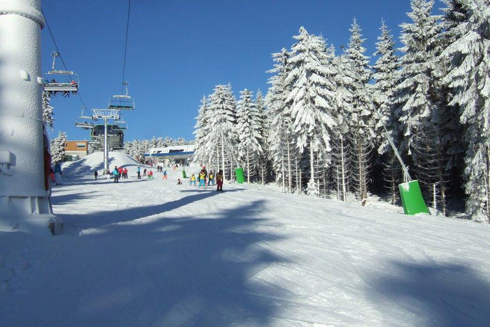 Schneewittchenhang Winterberg mit Schneewittchenhütte, Skiverleih und Skischule
