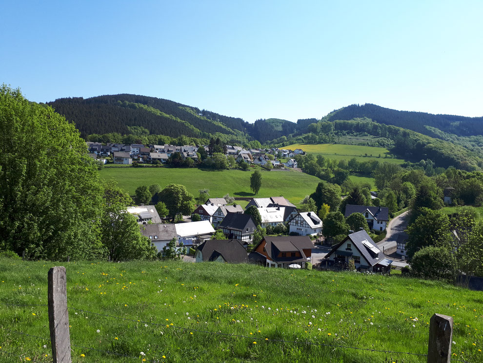 Die Aussicht auf die Häuser am Wald (rechts oben) bei einer Wanderung auf der gegenüberliegenden Talseite