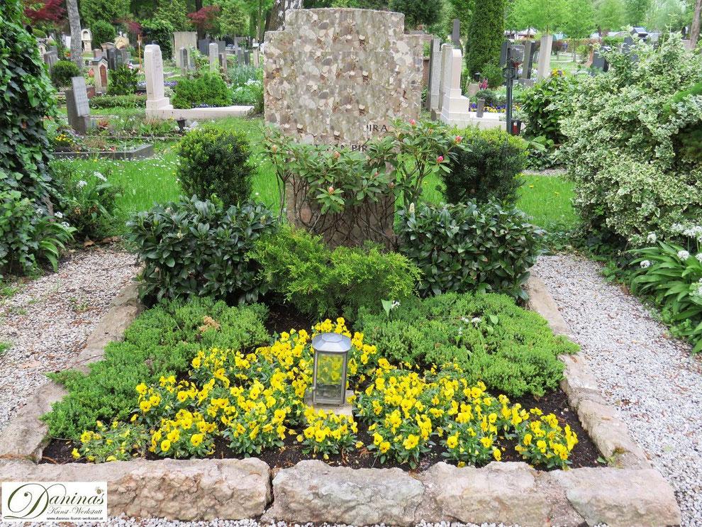 Grabgestaltung Mustergrab Frühliing mit gelben Stiefmütterchen und immergrünen Dauerpflanzen