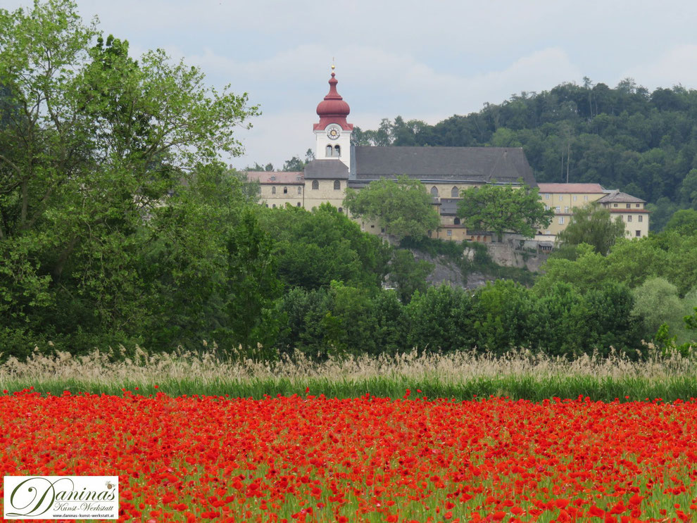 Salzburg Sehenswürdigkeit: Stift Nonnberg in Nonntal & Mohnfeld