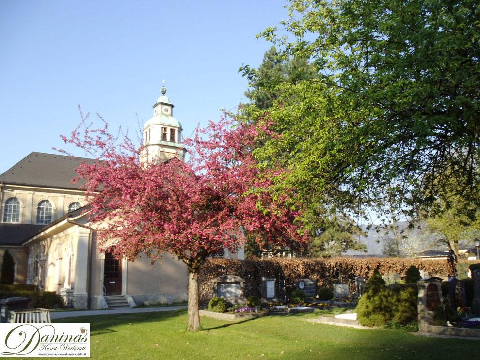 Salzburger Kommunalfriedhof - Aussegnungshalle und blühendes Apfelbäumchen