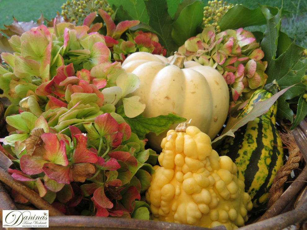 Herbstdeko mit Kürbissen, Hortensienblüten, Ahornsamen, Efeu und bunten Blättern