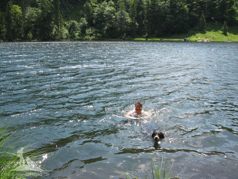Wandern mit Hund am Wasser