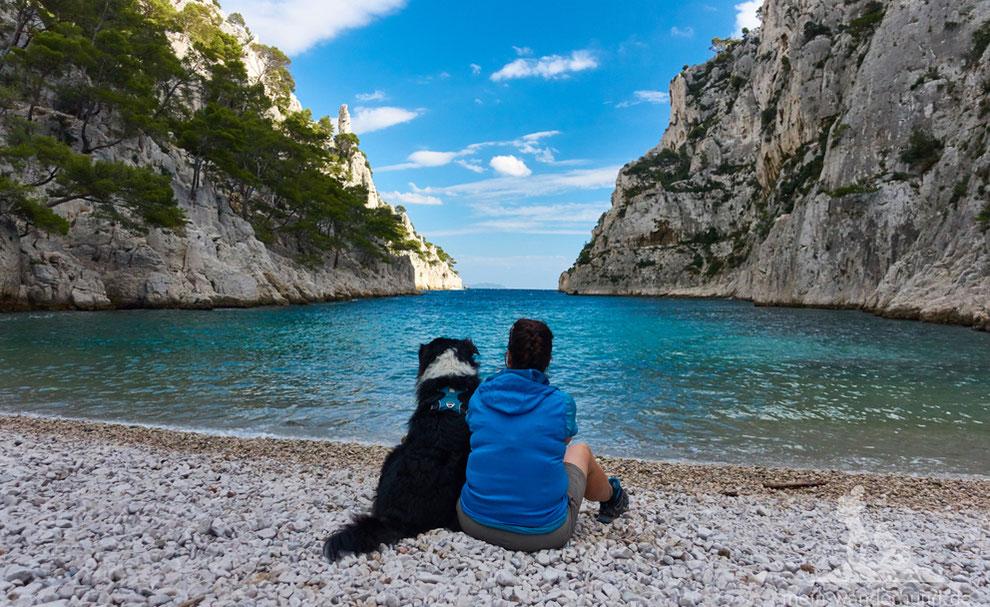 Urlaub mit Hund Provence, Südfrankreich, Wandern mit Hund, mein Wanderhund Ari, Andrea Obele, Urlaub mit Hund