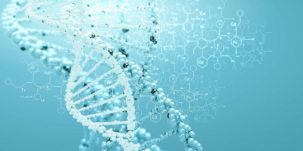 ダイヤモンドヘッドアカデミー 遺伝のイメージ画像