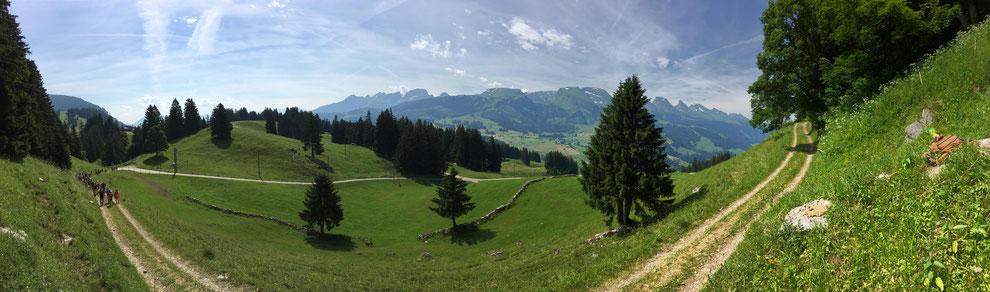 Panoramablick auf die Churfirsten.
