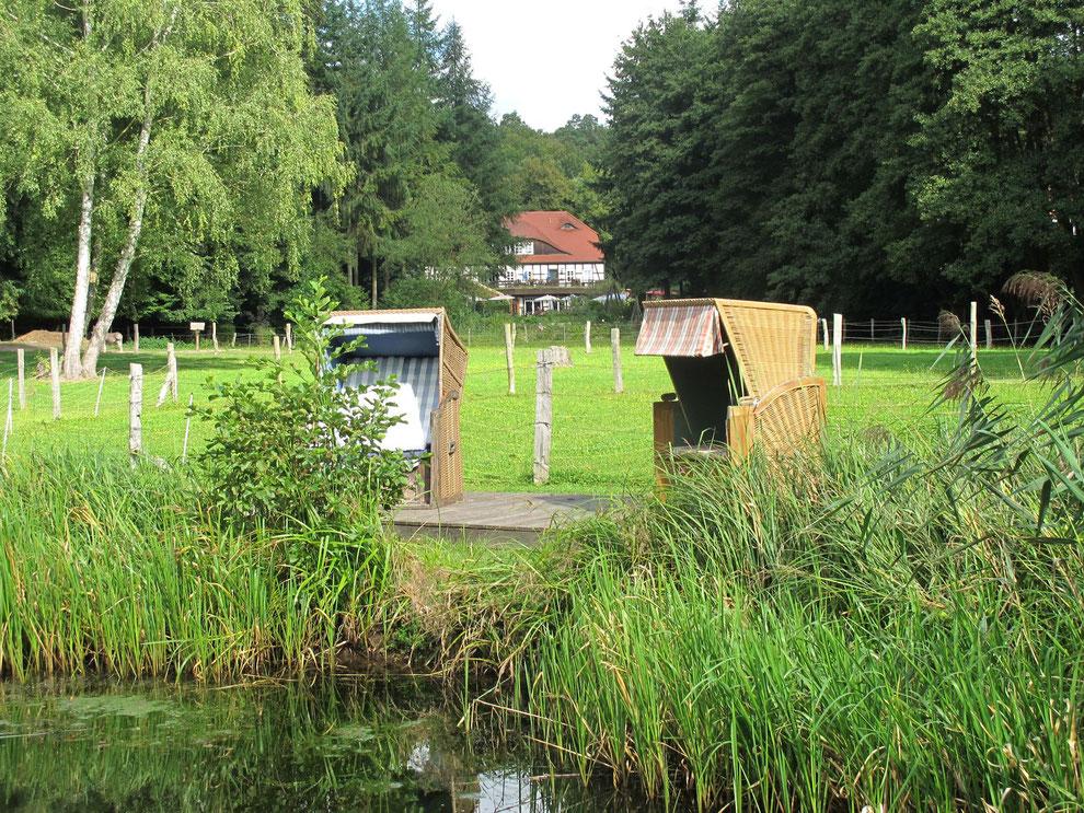 In Alleinlage direkt am See liegt die Boltenmühle idyllisch umgeben von Seen, Wald und Wiesen.
