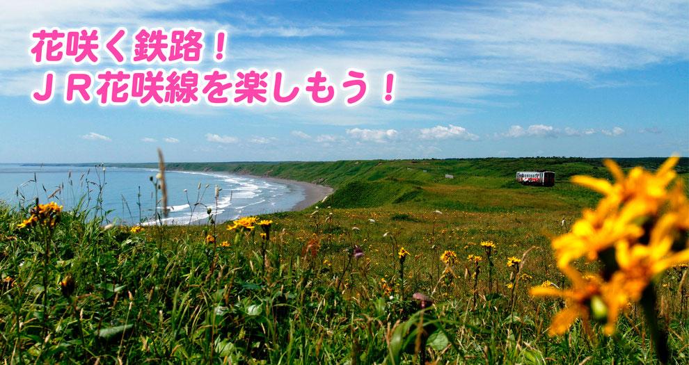 ◇JR花咲線 - 根室市観光協会