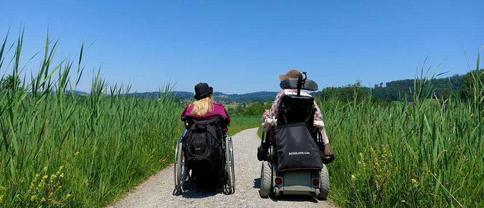 Bild mit zwei Rollstuhlfahrer