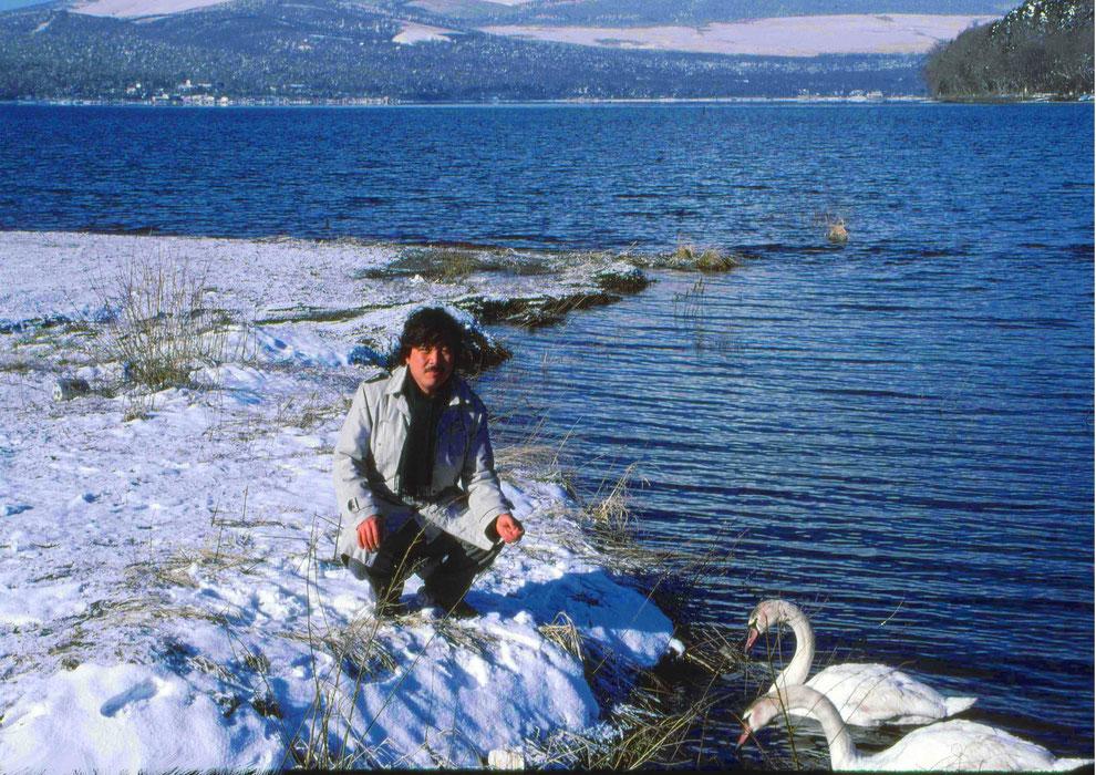 10  .   富士山 山中湖 大白鳥