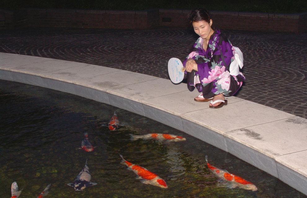 東京都 多摩市 多摩センター の 金錦鯉         芸術家  キム  ミン ジョン  画伯