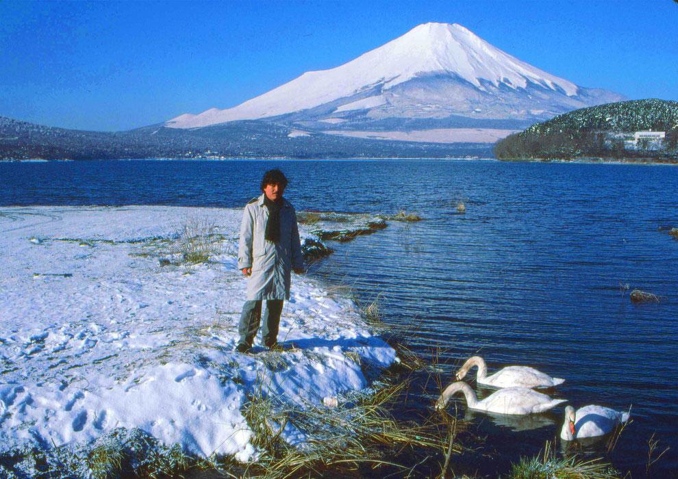 6  .   富士山 山中湖 大白鳥