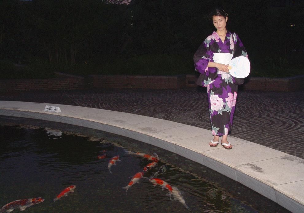 2  .  東京都 多摩市 多摩センター の 金錦鯉         芸術家  キム  ミン ジョン  画伯