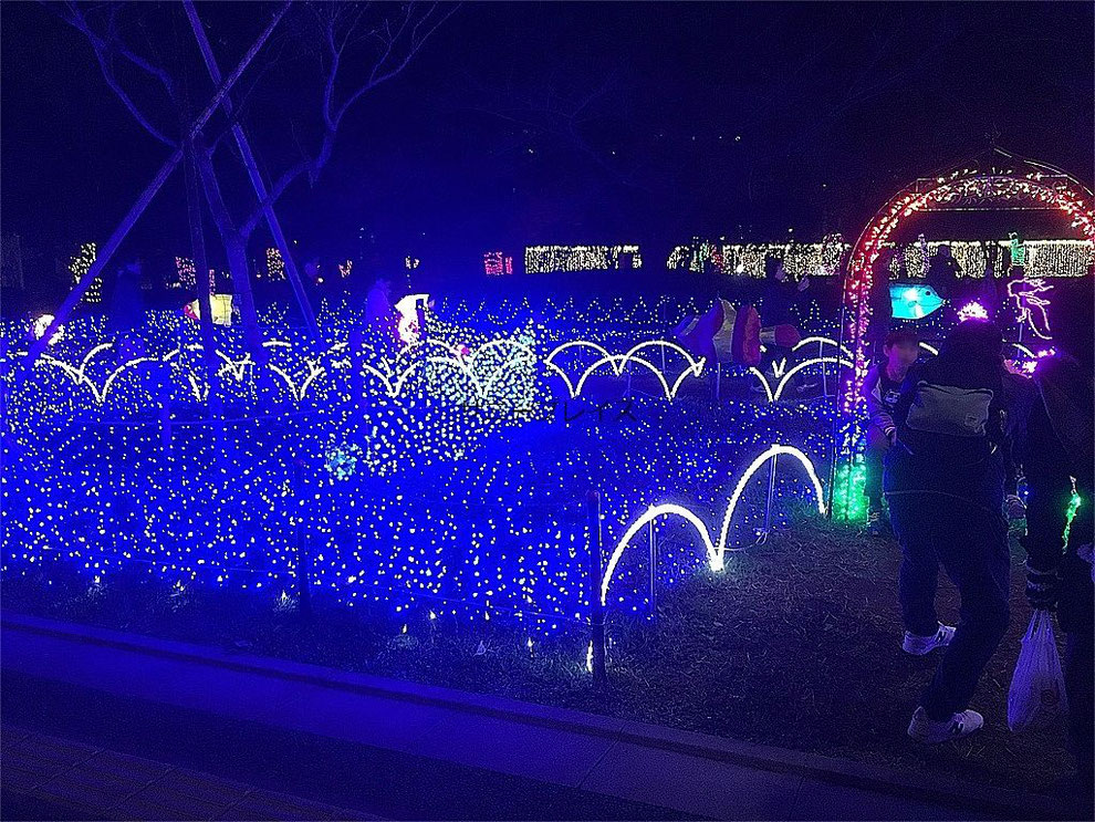 足立 光の祭典2019