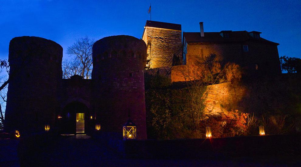 Foto: (c) Burg und Burgpark Gamburg