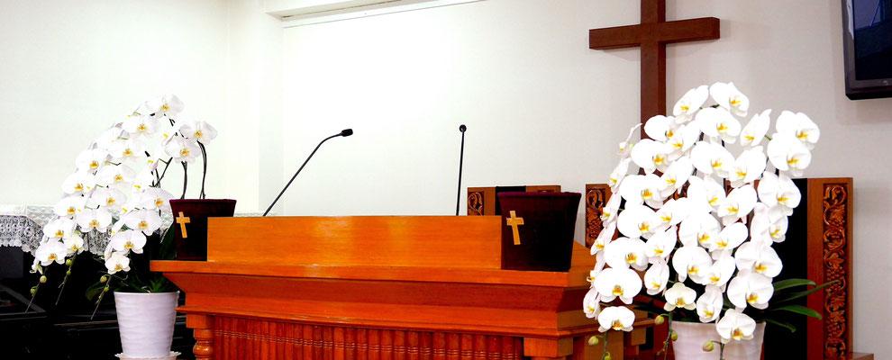 希望キリスト教会へようこそ! -...