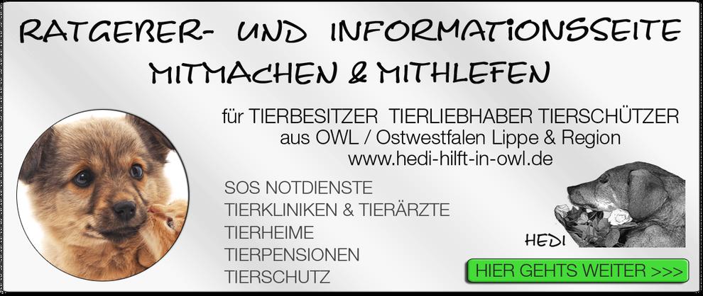 TIERKLINIK BIELEFELD TIERKLINIKEN NOTDIENST TIERÄRZTE TIERNOTDIENST TIEROPERATION OWL OSTWESTFALEN LIPPE TIERHILFE TIERSCHUTZ TIERHEIME 06