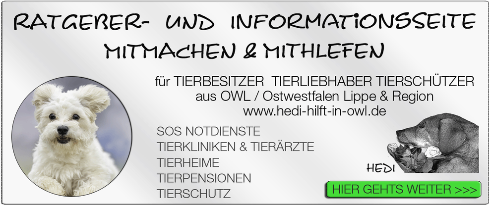 TIERKLINIK BIELEFELD TIERKLINIKEN NOTDIENST TIERÄRZTE TIERNOTDIENST TIEROPERATION OWL OSTWESTFALEN LIPPE TIERHILFE TIERSCHUTZ TIERHEIME 16