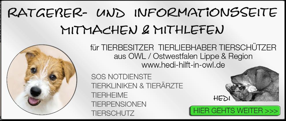 TIERKLINIK BIELEFELD TIERKLINIKEN NOTDIENST TIERÄRZTE TIERNOTDIENST TIEROPERATION OWL OSTWESTFALEN LIPPE TIERHILFE TIERSCHUTZ TIERHEIME 19