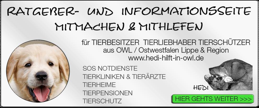 p12 TIERKLINIK BIELEFELD TIERKLINIKEN TIERÄRZTE TIERARZT NOTDIENST TIERNOTDIENST TIEROPERATION TIERNOTFALL OWL OSTWESTFALEN LIPPE TIERSCHUTZ TIERHILFE