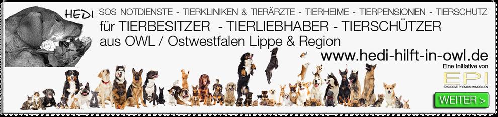 IMMOBILIENMAKLER HERZEBROCK-CLARHOLZ EPI IMMOBILIEN OWL OSTWESTFALEN LIPPE MAKLEREMPFEHLUNG MAKLERCHECK MAKLERVERGLEICH