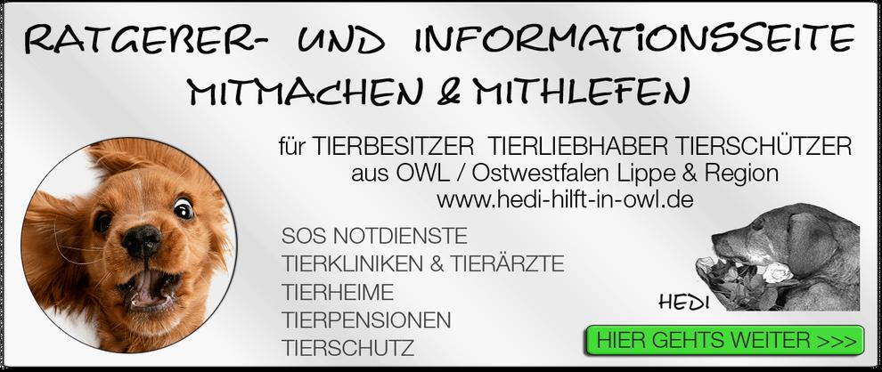 TIERKLINIK BIELEFELD TIERKLINIKEN NOTDIENST TIERÄRZTE TIERNOTDIENST TIEROPERATION OWL OSTWESTFALEN LIPPE TIERHILFE TIERSCHUTZ TIERHEIME 14