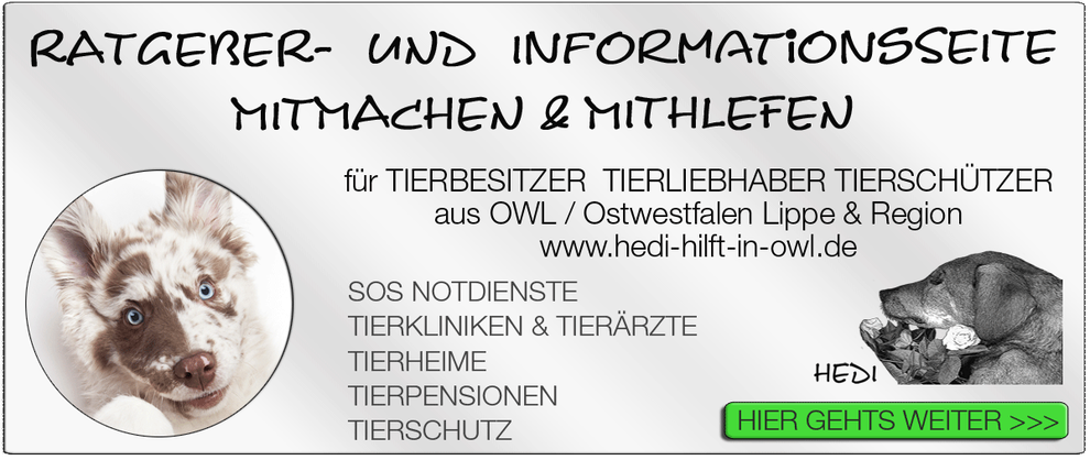 TIERKLINIK BIELEFELD TIERKLINIKEN NOTDIENST TIERÄRZTE TIERNOTDIENST TIEROPERATION OWL OSTWESTFALEN LIPPE TIERHILFE TIERSCHUTZ TIERHEIME 08