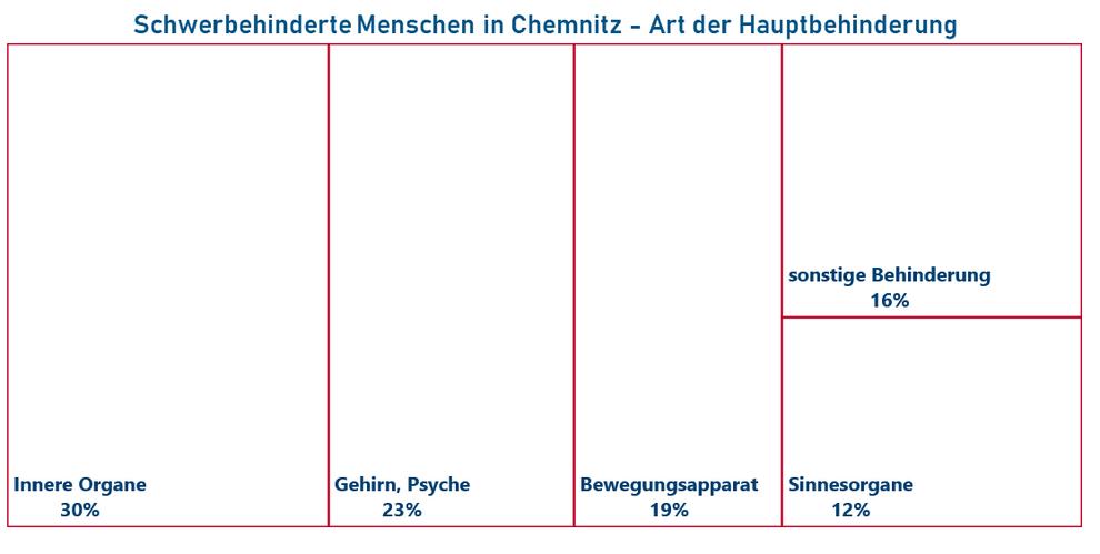 Art der Hauptbehinderung von Menschen mit Behinderung in Chemnitz (Quelle: Behindertenstrukturstatistik Chemnitz 2017; Stand 31.12.2017)