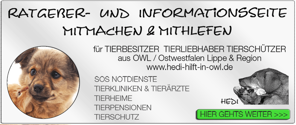 TIERKLINIK BIELEFELD TIERKLINIKEN NOTDIENST TIERÄRZTE TIERNOTDIENSTE TIEROPERATION OWL OSTWESTFALEN LIPPE TIERHILFE TIERSCHUTZ TIERHEIME 26