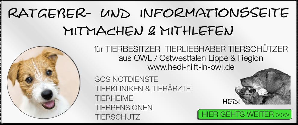 TIERKLINIK BIELEFELD TIERKLINIKEN NOTDIENST TIERÄRZTE TIERNOTDIENST TIEROPERATION OWL OSTWESTFALEN LIPPE TIERHILFE TIERSCHUTZ TIERHEIME 18