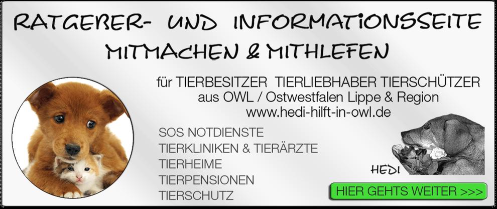 p02 TIERKLINIK BIELEFELD TIERKLINIKEN TIERÄRZTE TIERARZT NOTDIENST TIERNOTDIENST TIEROPERATION TIERNOTFALL OWL OSTWESTFALEN LIPPE TIERSCHUTZ TIERHILFE