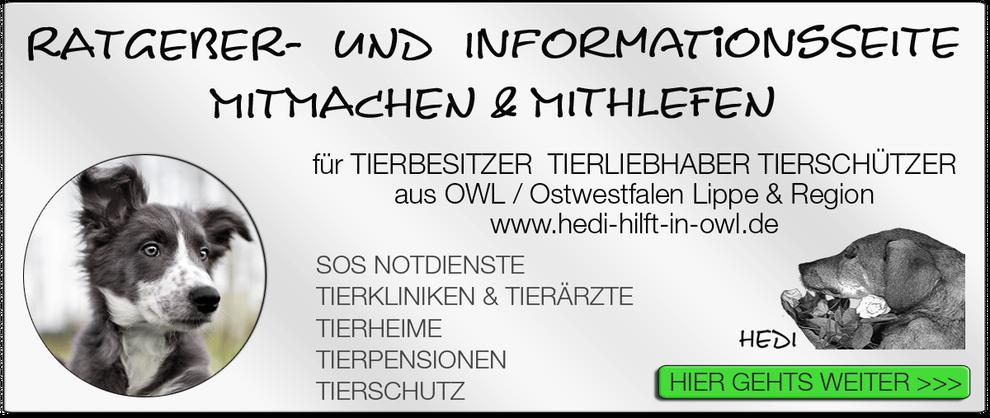 TIERKLINIK BIELEFELD TIERKLINIKEN NOTDIENST TIERÄRZTE TIERNOTDIENST TIEROPERATION OWL OSTWESTFALEN LIPPE TIERHILFE TIERSCHUTZ TIERHEIME 05