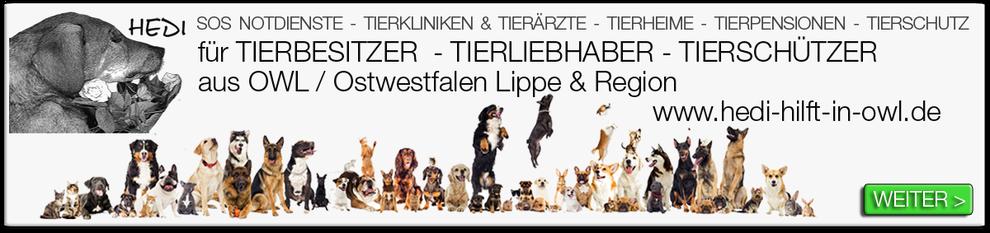 Tierkliniken Bielefeld Tierklinik Tierarzt Tierärzte Notdienst Tiernotdienst Ostwestfalen Lippe Tieroperation Tierschutz Tierheime Tierpensionen Tierquälerei Tierschützer