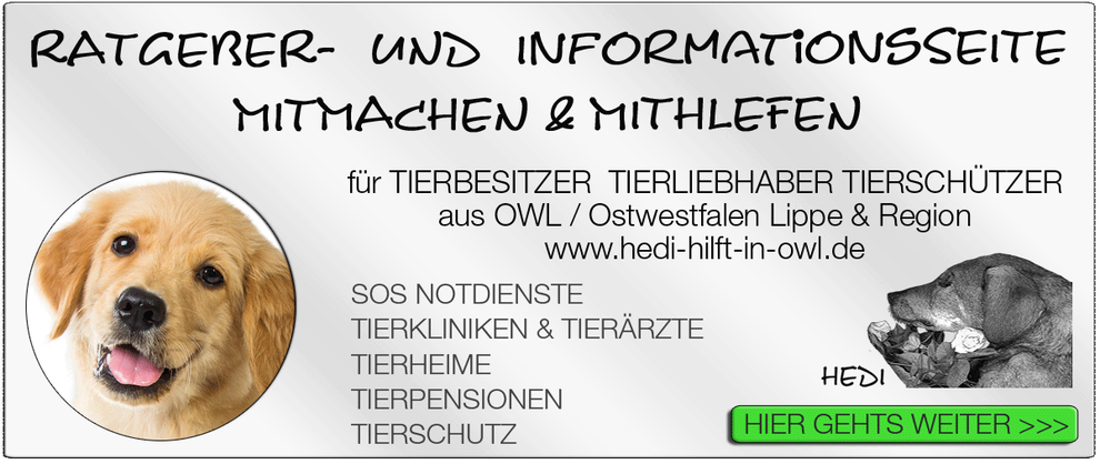 TIERKLINIK BIELEFELD TIERKLINIKEN NOTDIENST TIERÄRZTE TIERNOTDIENST TIEROPERATION OWL OSTWESTFALEN LIPPE TIERHILFE TIERSCHUTZ TIERHEIME 11