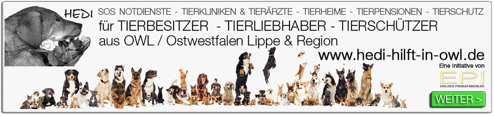IMMOBILIENMAKLER HERZEBROCK-CLARHOLZ OWL OSTWESTFALEN LIPPE MAKLERVERGLEICH MAKLEREMPFEHLUNG