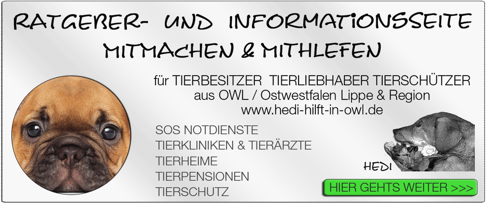 TIERKLINIK BIELEFELD TIERKLINIKEN NOTDIENST TIERÄRZTE TIERNOTDIENST TIEROPERATION OWL OSTWESTFALEN LIPPE TIERHILFE TIERSCHUTZ TIERHEIME 07
