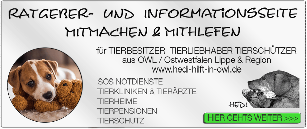 TIERKLINIK BIELEFELD TIERKLINIKEN NOTDIENST TIERÄRZTE TIERNOTDIENST TIEROPERATION OWL OSTWESTFALEN LIPPE TIERHILFE TIERSCHUTZ TIERHEIME 29