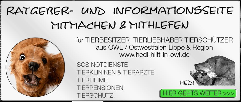 TIERKLINIK BIELEFELD TIERKLINIKEN NOTDIENST TIERÄRZTE TIERNOTDIENST TIEROPERATION OWL OSTWESTFALEN LIPPE TIERHILFE TIERSCHUTZ TIERHEIME 21