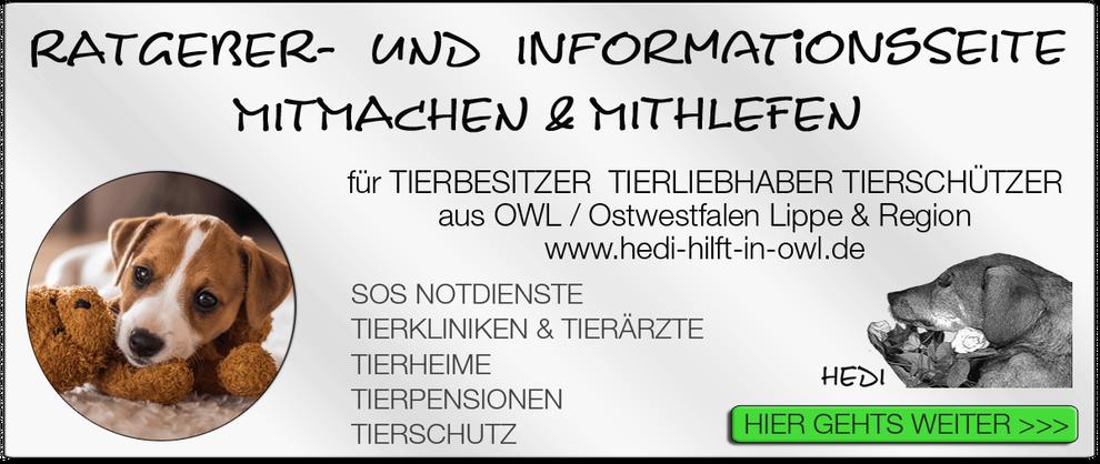 TIERKLINIK BIELEFELD TIERKLINIKEN NOTDIENST TIERÄRZTE TIERNOTDIENST TIEROPERATION OWL OSTWESTFALEN LIPPE TIERHILFE TIERSCHUTZ TIERHEIME 03