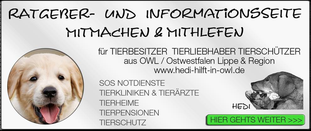 TIERKLINIK BIELEFELD TIERKLINIKEN NOTDIENST TIERÄRZTE TIERNOTDIENST TIEROPERATION OWL OSTWESTFALEN LIPPE TIERHILFE TIERSCHUTZ TIERHEIME 12
