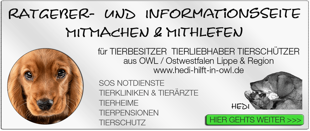 TIERKLINIK BIELEFELD TIERKLINIKEN NOTDIENST TIERÄRZTE TIERNOTDIENST TIEROPERATION OWL OSTWESTFALEN LIPPE TIERHILFE TIERSCHUTZ TIERHEIME 13