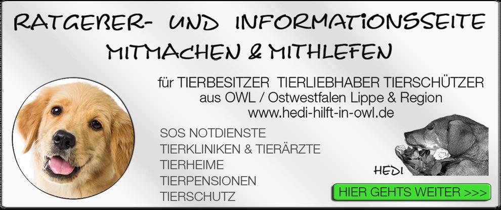 p11 TIERKLINIK BIELEFELD TIERKLINIKEN TIERÄRZTE TIERARZT NOTDIENST TIERNOTDIENST TIEROPERATION TIERNOTFALL OWL OSTWESTFALEN LIPPE TIERSCHUTZ TIERHILFE