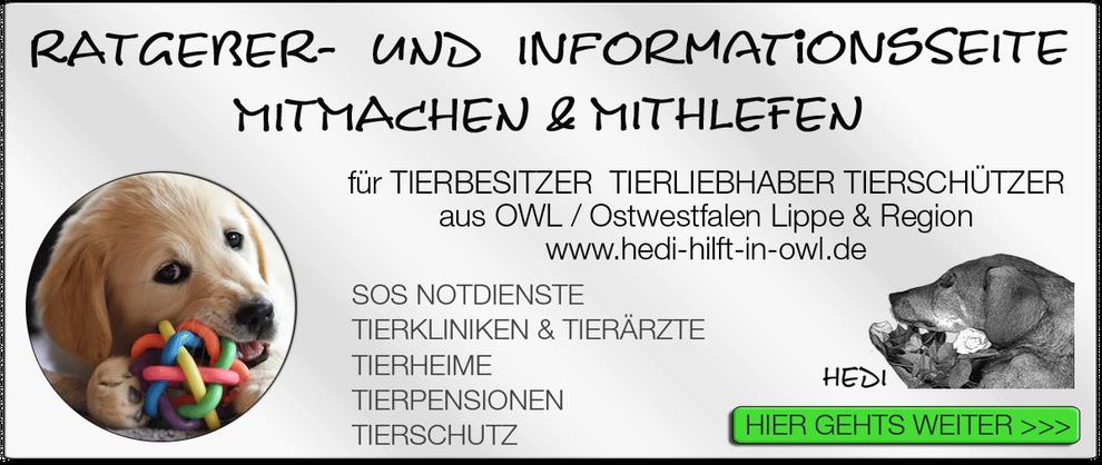 TIERKLINIK BIELEFELD TIERKLINIKEN NOTDIENST TIERÄRZTE TIERNOTDIENST TIEROPERATION OWL OSTWESTFALEN LIPPE TIERHILFE TIERSCHUTZ TIERHEIME 04