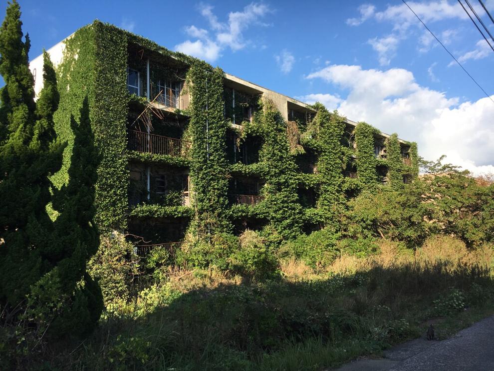植物に覆われた池島のアパート