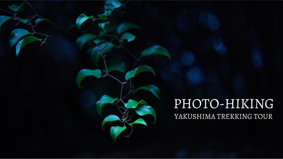 屋久島写真,ネイチャーフォト,フォトトレッキング,フォトレクチャー,写真の撮り方,半日過ごし方,カメラ初心者