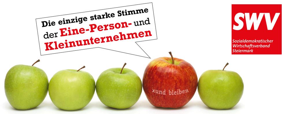 Sozialdemokratischer Wirtschaftsverband Steiermark: Die einzige starke Stimme der Eine-Person- und Kleinunternehmen