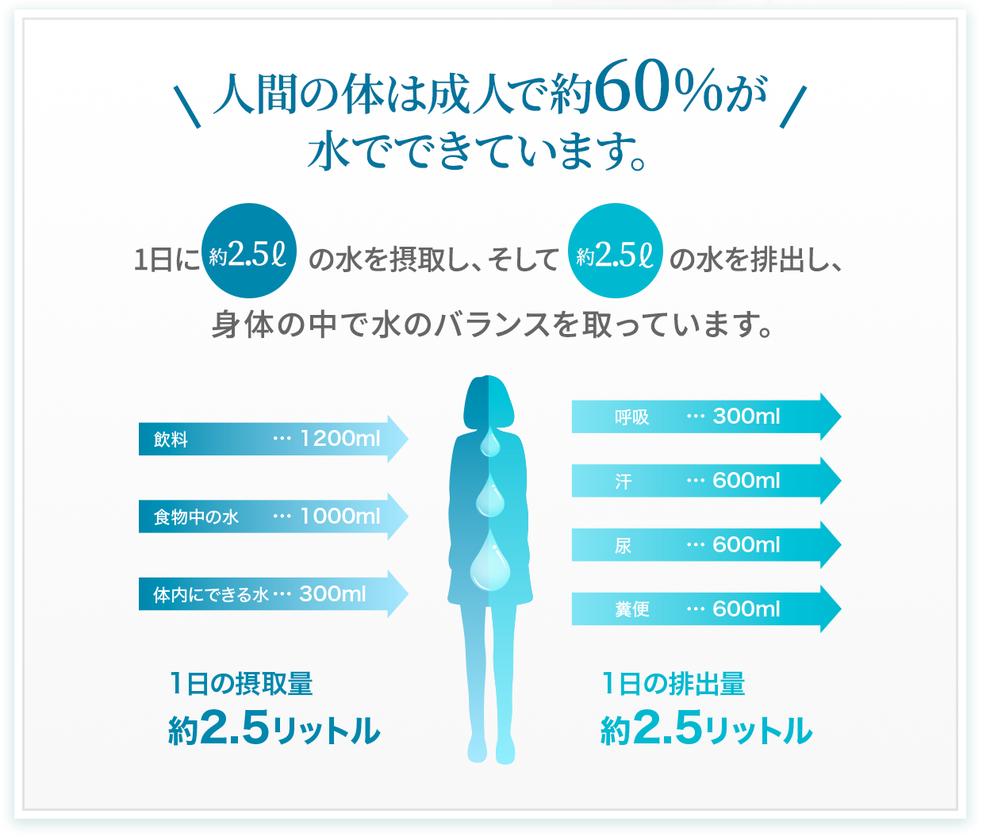 人間の体は成人で約60%が水でできています