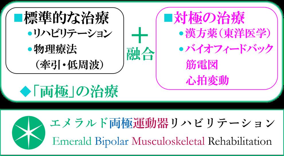 エメラルド整形外科疼痛クリニックのリハビリテーションの大きな特徴は、「両極」のリハビリテーションであり、標準的な治療であるリハビリテーションと対極の治療を融合して治療します。