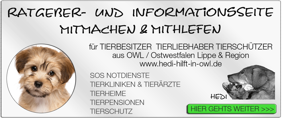 TIERKLINIK BIELEFELD TIERKLINIKEN NOTDIENST TIERÄRZTE TIERNOTDIENST TIEROPERATION OWL OSTWESTFALEN LIPPE TIERHILFE TIERSCHUTZ TIERHEIME 09